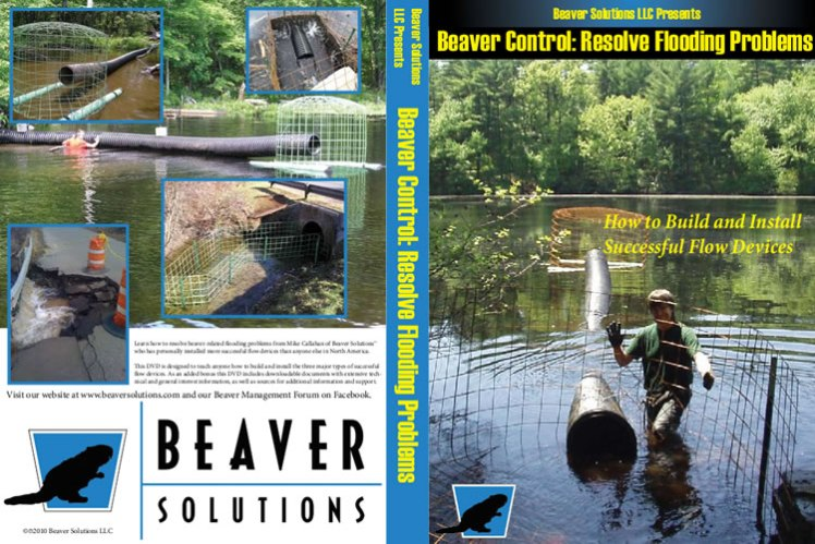 beaversolutions-disc-cover
