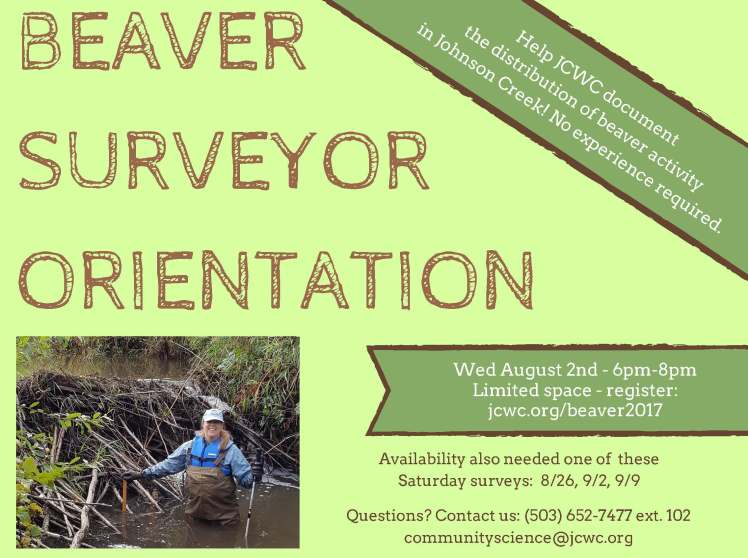 Beaver Surveyor Orientation flyer-2