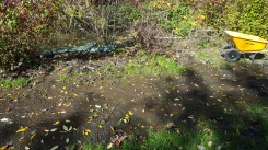 Sand bags along the lowest point of the beaver pond is short term fix. Water always finds a way.