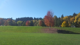 What a beautiful day in Oregon! Heron Creek is along that tree line.