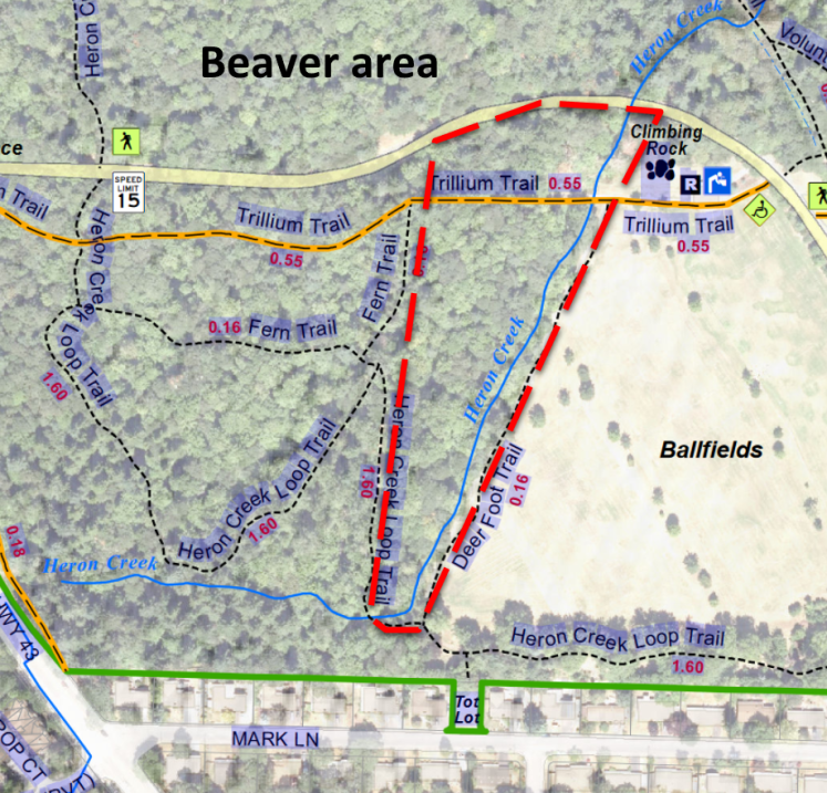 MSY beaver area on trail map